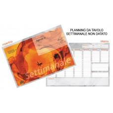 PLANNING DA TAVOLO SETTIMANALE 48*33 - NON DATATO