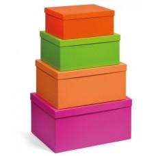 NIJI SET 4 BOX IN 4 MISURE NEON