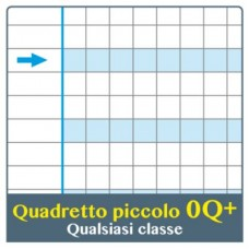 ONE COLOR QUADERNO DIDATTICO MAXI Q PLUS 100GR CONF.6